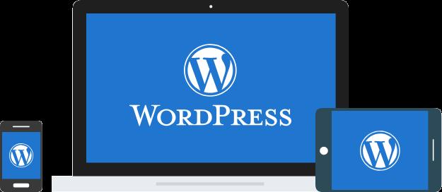 Wordpress Hosting Bangalore, Website hosting Bangalore